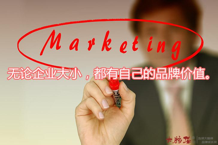 大脑袋传媒为品牌企业营销传播赋能 第1张